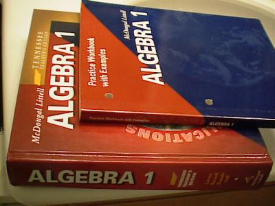 EBlueJay Mcdougal Littell Algebra 1 Teacher S Edition