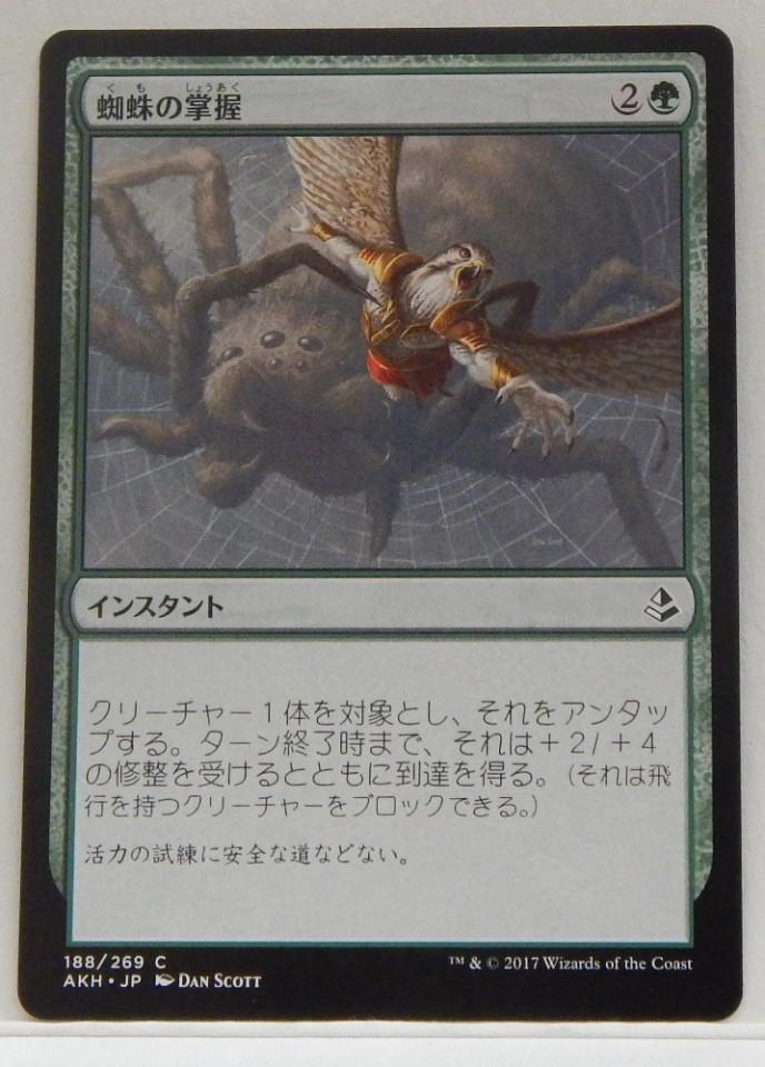 Spidery Grasp X4 M//NM Magic The Gathering MTG Amonkhet