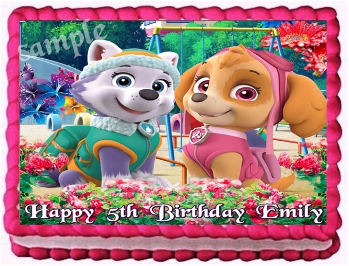 Admirable Ebluejay Paw Patrol Everest And Skye Edible Cake Topper Birthday Funny Birthday Cards Online Alyptdamsfinfo