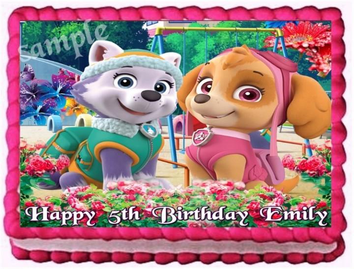 Groovy Ebluejay Paw Patrol Everest And Skye Edible Cake Topper Birthday Funny Birthday Cards Online Alyptdamsfinfo