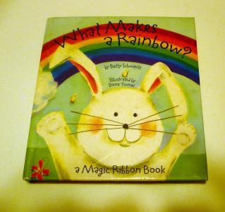 Ebluejay Books Pop Up Children What Makes A Rainbow Hc
