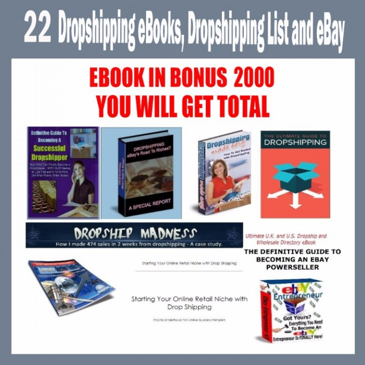 Making Money On Ebay Selling Books Amish Furniture Dropship