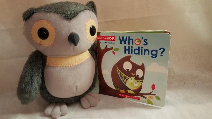 Ebluejay Owl Gift Set 9 5 Inch Tall Kohl S Cares Owl Scholastic