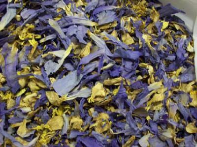 Ebluejay Blue Lotus Incense 1g Nymphaea Caerulea Dried Flowers